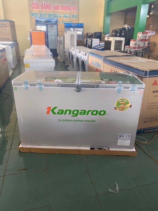Tủ đông kháng khuẩn kangaroo kg418vc2